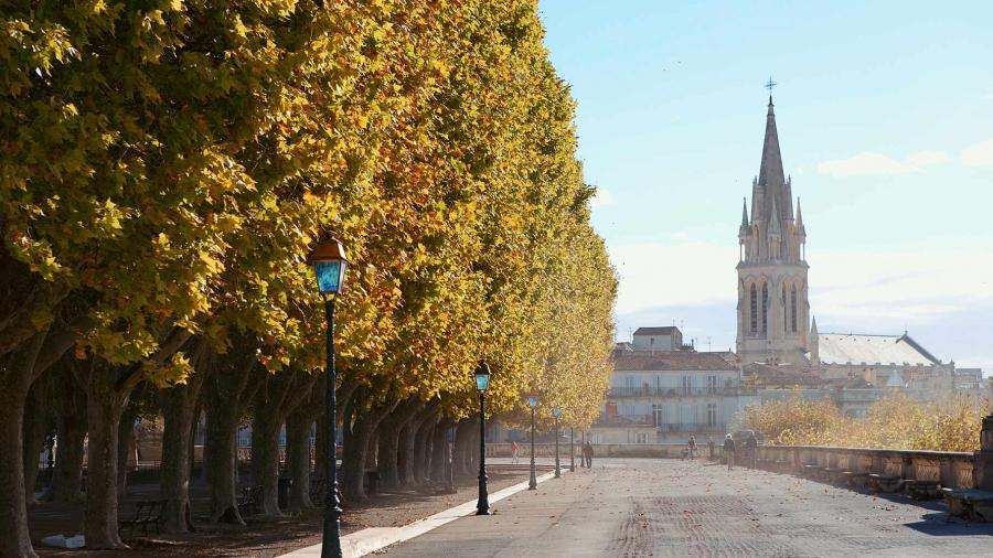 esl-montpellier-language-stay-2